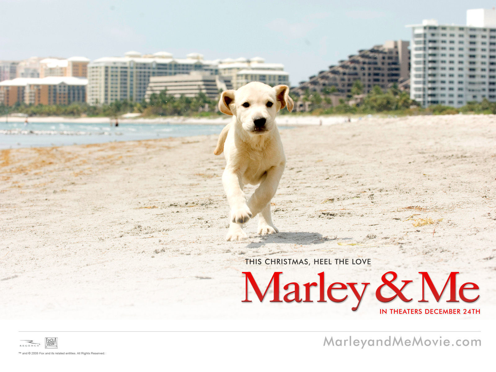 Marley and me sex pictures useful