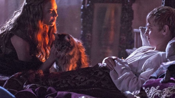 GoT-showrunners: Ser Pounce is dood