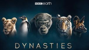 Dynasties Trailer