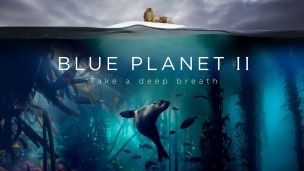 'Blue Planet II' Trailer